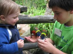 Sylvan smiles with Kenny and the lorikeets