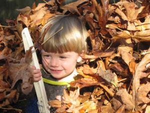"""Raking"" leaves"