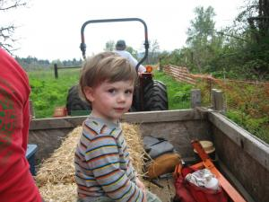 Sylvan worships Hal, who's driving the tractor