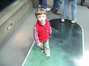 Sylvan walking through the shark tunnel