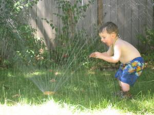 Sylvan drinks the sprinkler