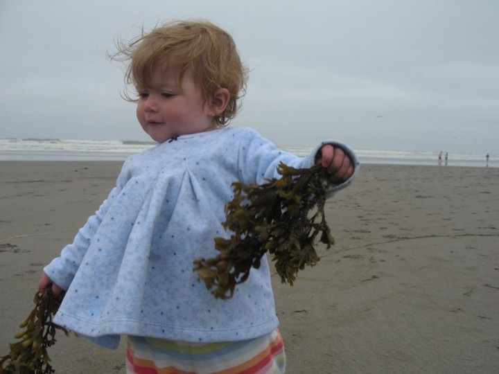 elena_seaweed
