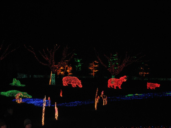 Zoolights at Portland's Oregon Zoo. Diana and I brought the kids on a crisp day after Christmas.